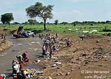Vlednu je vMasai Step na severu Tanzanie vody dost, a tak všichni myjí u řeky všechno