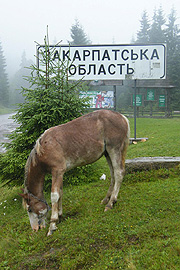 Hranice Zakarpatské oblasti uToruňského průsmyku
