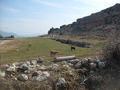 Na antickém stadionu ve městě Tlos se pasou kozy