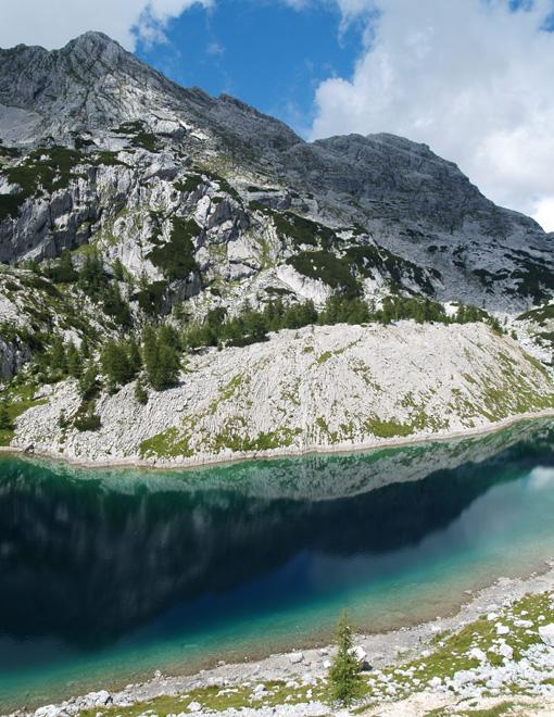 Horské jezero v údolí triglavských jezer