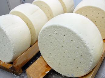 Sýr lori se naloží do slaného nálevu aje celkem dvakrát zahříván