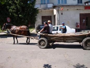 Místní obyvatelé na koňském povozu