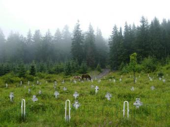 Hřbitov rakouských vojáků z 1. světové války