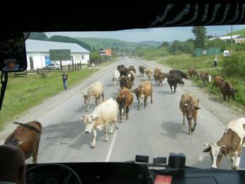 Běžná dopravní situace na Zakarpatské Ukrajině
