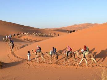 Pouštní karavana na dunách Erg Chebbi