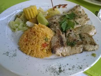 Čekání na oběd se vyplatilo, byla výborná grilovaná ryba