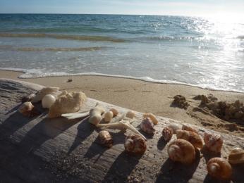 Pláž Ancón na pobřeží Karibiku
