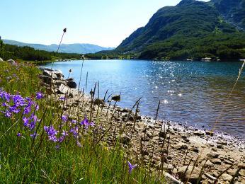 Smradlavé jezero
