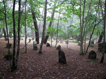 GPS nás zavedla do lesa plného menhiradolmenů