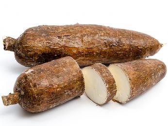 Maniok jedlý