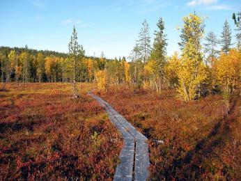 Na toulkách podzimním Finskem