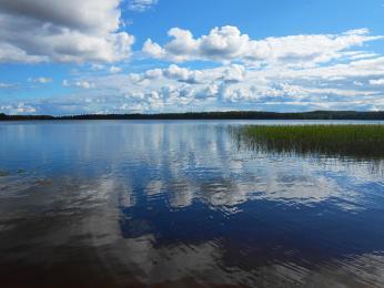 Jezero Suomunjärvi vNP Patvinsuo