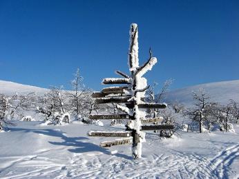Zima vLaponsku