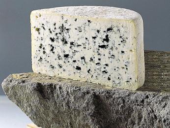Bleu d´Auvergne - modrý sýr pocházející z regionu Auvergne