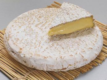 Brie - měkký sýr zkravského mléka pokrytý bílou plísní