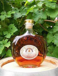 Cognac - vinná brandy