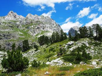 Hory tvoří především vápenec