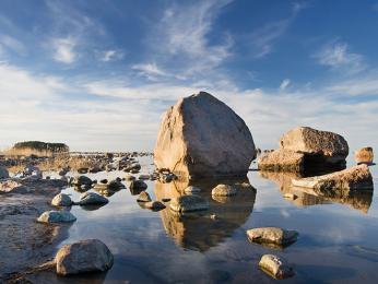 Bludné kameny rozeseté podél pobřeží Finského zálivu