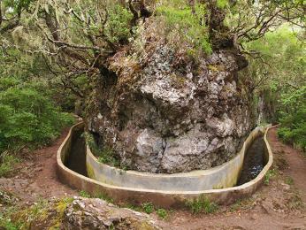 Levady jsou zavlažovací kanálky, kterými je protkaná celá Madeira