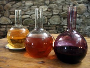 Tři barvy vína