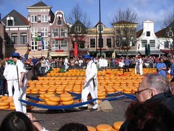 Sýrový trh v Alkmaaru je vyhledávaný jak turisty, tak místními