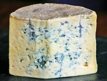 Cashel Blue - irský poloměkký sýr