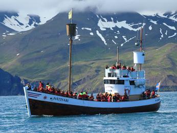 Výletní loď vyrážející na širé moře za velrybami