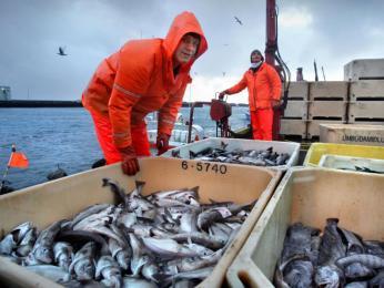 Rybařením se živí mnoho Islanďanů
