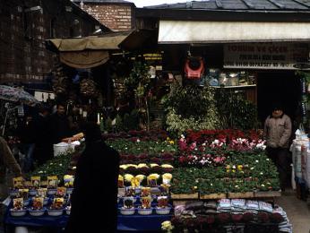 Na Egyptském bazaru můžete zakoupit ikvětiny či živá zvířata