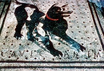 Mozaika v Domě tragického básníka