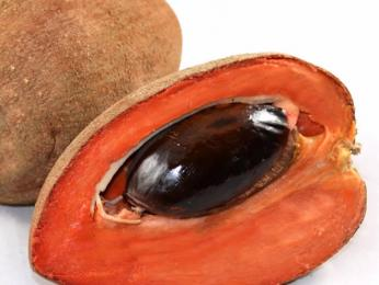 Na Kostarice roste spousta druhů šťavnatého ovoce, jako třeba zapota