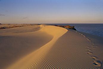 Ne nadarmo se Kurské kose přezdívá Baltská Sahara