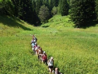 Značená cesta vpohoří Bistra se může ztratit vtřímetrových kopřivách