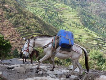 Cesta z Jiri do Lukly je velmi náročná