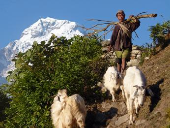 Na nepálském venkově
