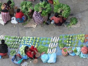 Na ulici koupíte čerstvou zeleninu aovoce, vždy vše ale pořádně umyjte