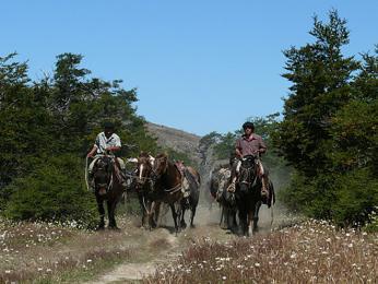 Patagonští kovbojové