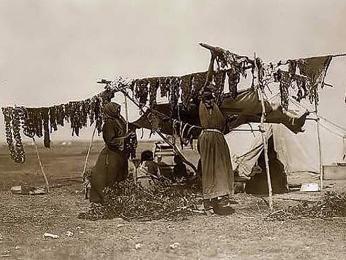 Metodu sušení potravin používali už staří Egypťané, američtí indiáni nebo středověcí mořeplavci