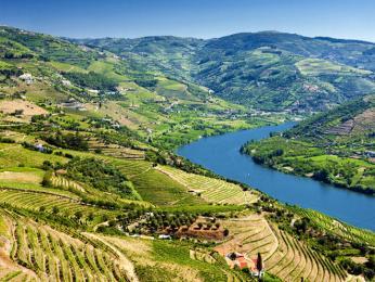 Portské víno se vyrábí zhroznů pěstovaných vúdolí řeky Douro