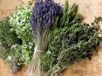 Do jídla se často přidávají čerstvé provensálské bylinky