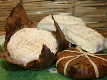 Kozí sýr Banon se balí do kaštanových listů
