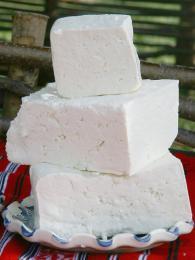 Tradiční měkký sýr telemea