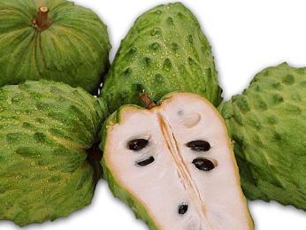Méně známé ovoce Srí Lanky je graviola