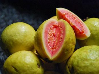 Na Srí Lance roste neuvěřitelné množství druhů exotického ovoce, např. guave