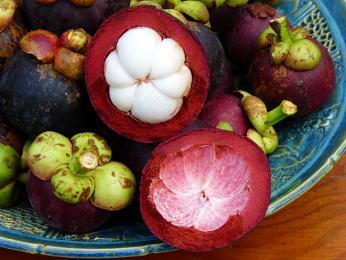 Mezi vynikající srílanské ovoce patří také mangostan (mangostana lahodná)