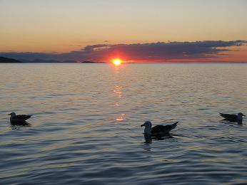 Půlnoční slunce nad jezerem Torneträsk vseverním Švédsku