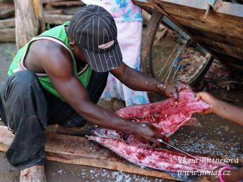 Porcování ryby v malé vesničce Ikola na břehu jezera Tanganika