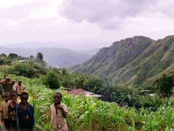 Na svazích Uluguru Mountains jsou rozeseta políčka vesničanů a díky vyšší poloze se zde již nevyskytuje malárie