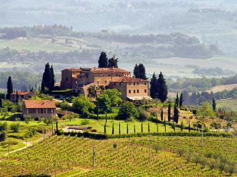 Kraj Chianti charakterizují široké pásy vinic
