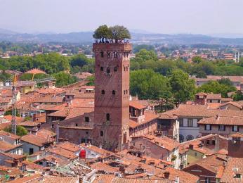 Opevněná věž Torre Guinigi je porostlá až do výšky 44 m cesmínovým dubem